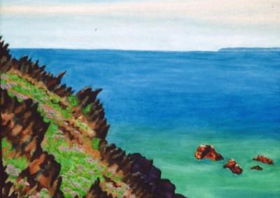 Strandastern i. d. Felsen, 40x55, 1998