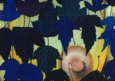 Ahornbrust, 70x70, 1988